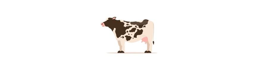 لحوم الأبقار